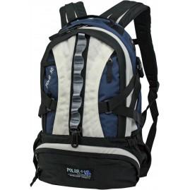 Рюкзак Polar 1003
